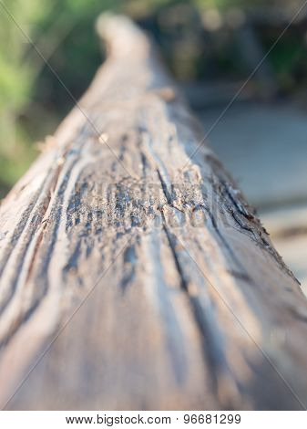 In Front Of Old Wood Tie