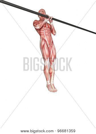 exercise illustration - close grip pull ups