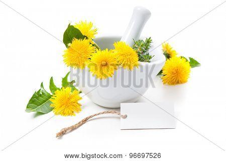 Dandelion and a mortar. Alternative medicine concept