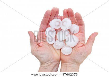 Hands holding Hail