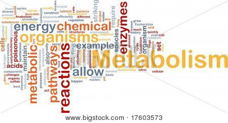 Background concept wordcloud illustration of Metabolism metabolic