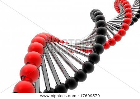 render of DNA isolated in white background