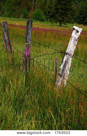 Idaho Fence 2
