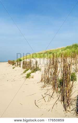 Dunes in the beach landscape at Dutch wadden island