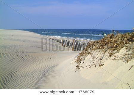 Sand Dunes & Beach