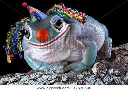 Frog Clown