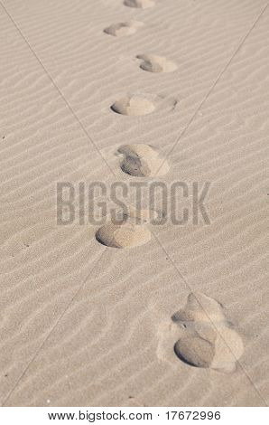 footprints on the sand, extreme closeup photo