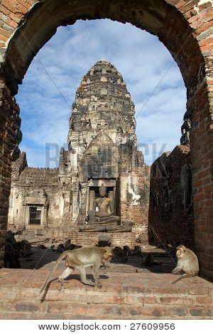 Monkey In Phra Prang Sam Yot