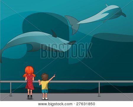 Children In The Oceanarium
