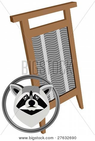 Raccoon and board washing