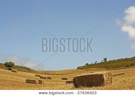 Haybales in the fields against a blue sky in Portugal