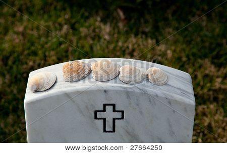 Sea Shells In Arlington Cemetery