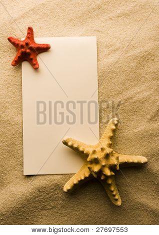 Sand and seashells frame
