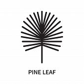 Pine Leaf Icon Isolated On White Background. Pine Leaf Icon Simple Sign. Pine Leaf Icon Trendy And M poster