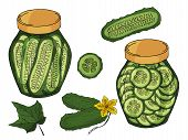 Collection Of Different Objects. Glass Jar With Home Made Cucumbers. Hand Drawn Objects Isolated. Ve poster