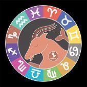 Capricorn Zodiac Sign. Aquarius, Libra, Leo, Cancer, Pisces, Virgo, Sagittarius, Aries, Gemini, Scor poster