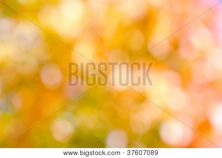 Autumnal Natural Background