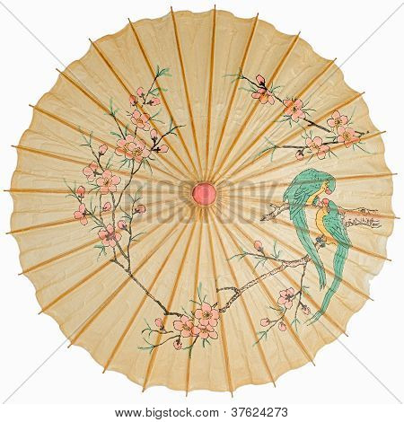Oriental Umbrella Isolated