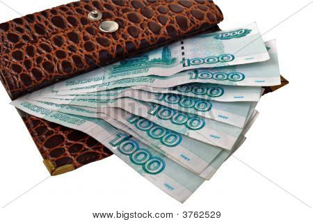 Leather Purse With Monetary Denominations