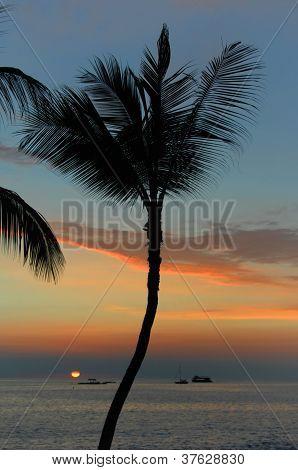 Glowing Sunset On Kona Side