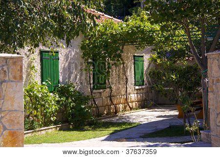 House Yard In Croatia
