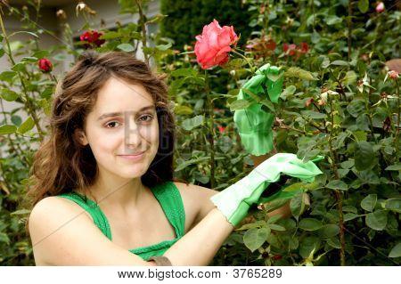 Brunette Beauty In A Garden