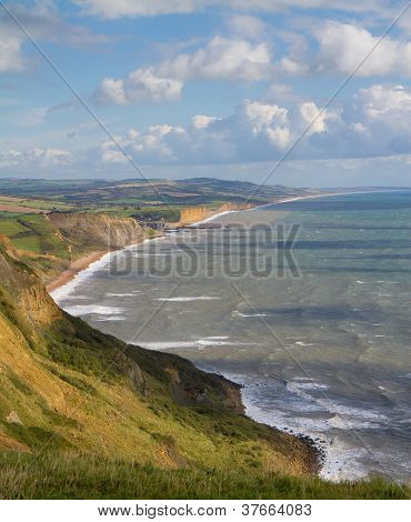 Coast of Dorset England