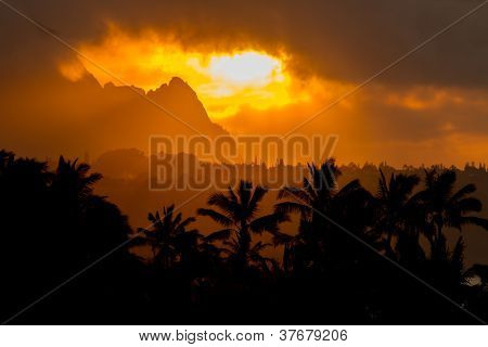 Dramatic Evening Sunlight With Silouette Coconut Trees