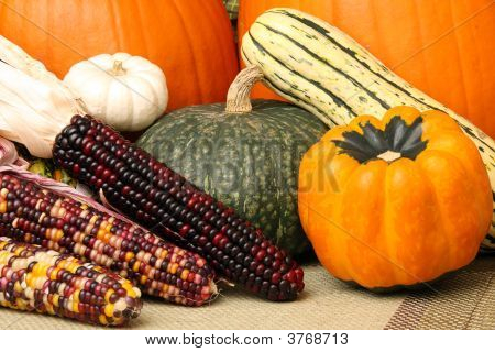 Autumn Scene With Pumpkins, Corn, And Colorful Squash