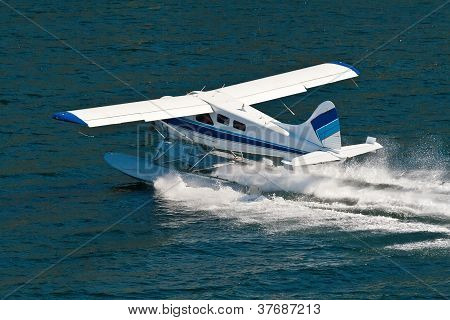 Small Seaplane Landing In Alaska