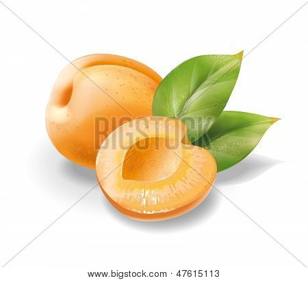 Apricot without stone