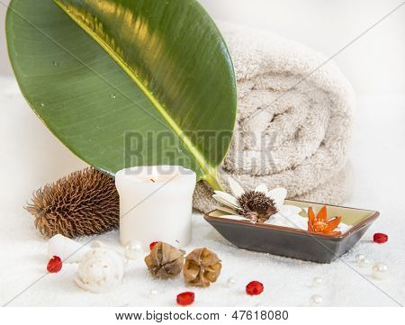 Natural SPA Elements