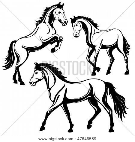 Set of three horses. Black white picture, isolated on white background, vector illustration.