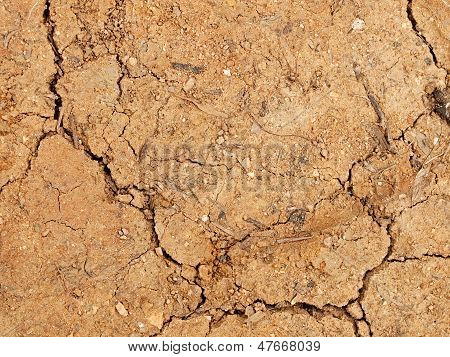 Hard Cracked Dry Dirt With Quartz