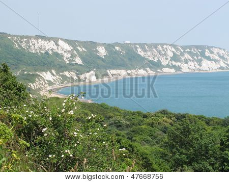 The Cliffs At Folkestone