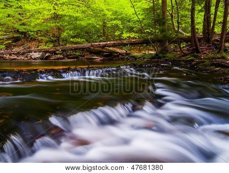 Cascades Above Ganoga Falls In Ganoga Glen, Ricketts Glen State Park, Pennsylvania.