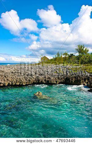 On volcanic island