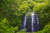 Waterfall In Hawaii, Kauai