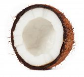 Coconut. isolated on a white background