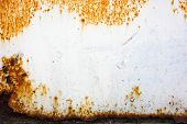 image of rusty-spotted  - large Rust backgrounds  - JPG