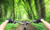 stock photo of biker  - Mountain biking down hill descending fast - JPG