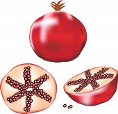 Delicious-fruit-pomegranate