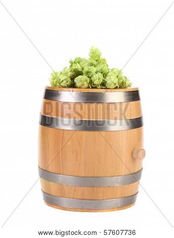Barrel with hop on top.
