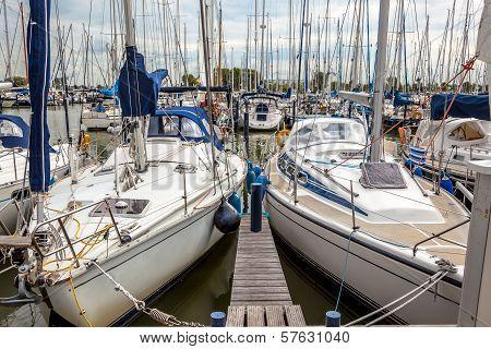 Sailing Yacht Marina