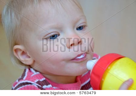Cute Toddler Drinking Milk From Sippie Cup