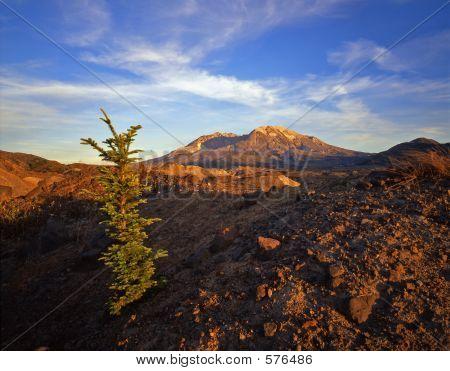 Mt St Hellens
