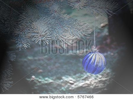 Ornament on Spruce