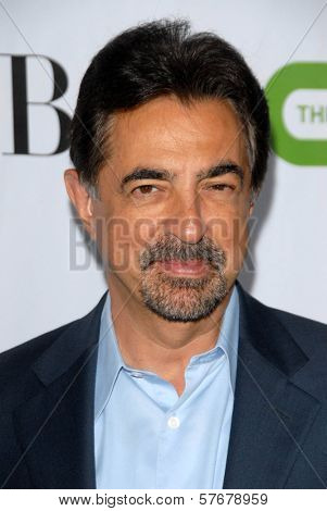 Joe Mantegna at the CBS, CW and Showtime All-Star Party. Huntington Library, Pasadena, CA. 08-03-09