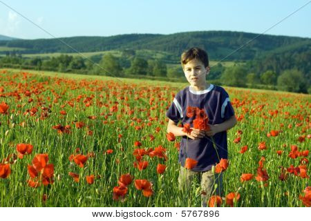 Boy In The Field Of Poppy Flowers