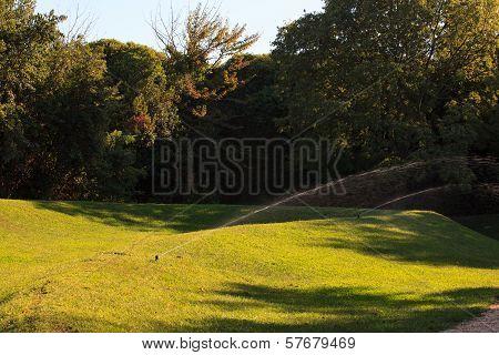 Water Sprinkler, Grass Field